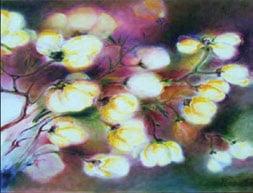 Ram de magnolie, pictură ulei pe pânză 50x60 cm