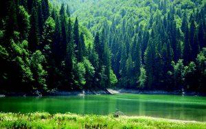 Lacul Scropoasa