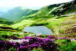 Munții Rodnei - Lacul Lala