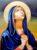 CĂLĂTORIILE ȘI PARTICIPAREA LA VIAȚA LUI IISUS A SFINTEI FECIOARE MARIA